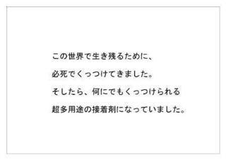 セメダイン24.jpg